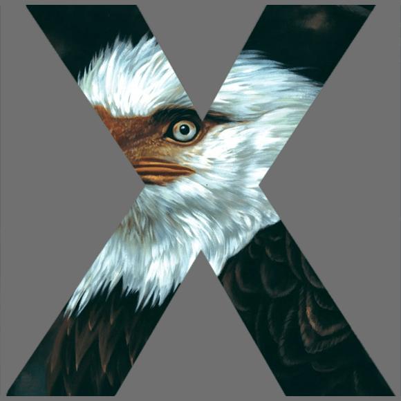 The Hawk is Howling (2008) van Mogwai